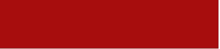 logo-v3-h100.png