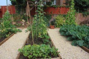 Garden in Cinderford